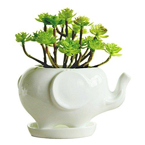 GeLive Elephant White Ceramic Succulent Planter Flower Pot Window Box with Saucer (Succulent Plants In Pots compare prices)