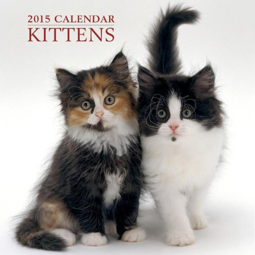 2015 Calendar: Kittens: 12-Month Calendar Featuring Wonderful Photography and Space in Write in Key Events