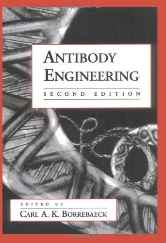 Antibody Engineering (Breakthroughs In Molecular Biology)