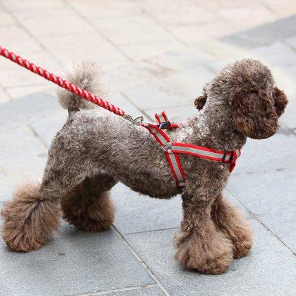 eqlefr-guinzaglio-con-pettorina-s-rosso-grigio-resistente-per-cani