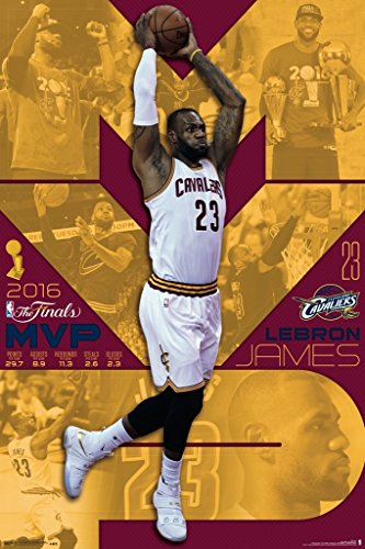 2016 NBA Finals- MVP Lebron