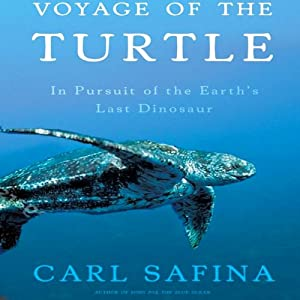 Voyage of the Turtle Audiobook