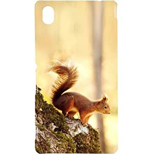 Casotec Squirrel Design Hard Back Case Cover for Sony Xperia M4 Aqua