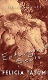 Entangled Souls: Cade and Francesca (Scarred Hearts)