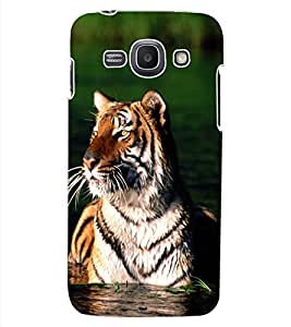 ColourCraft Tiger Look Design Back Case Cover for SAMSUNG GALAXY ACE 3 3G S7270