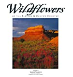 img - for Wildflowers of the Plateau & Canyon Country (Companion Press Series) book / textbook / text book