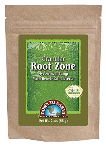 down-to-earth-granular-root-zone-for-enhancing-seed-germination-rates-and-transplant-survival-2-oz