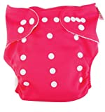 Trend Lab Cloth Diaper, Fuchsia with Pink Liner