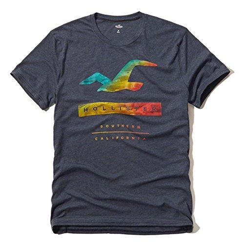 (ホリスター)Hollister メンズ Tシャツ ( 半袖 ) HOLLISTER LOGO GRAPHIC TEE [並行輸入品]