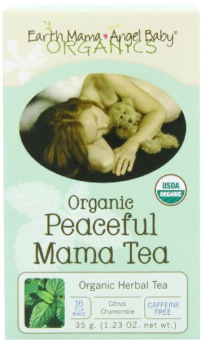 Earth Mama Angel Baby Bio pacifique Mama Tea, 16