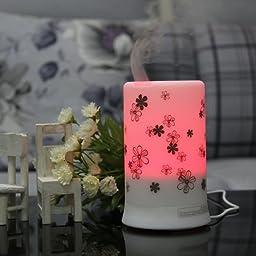 Signstek 100milliliter Ultrasonic Aroma Oil Diffuser Mini Air Humidifier