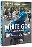 vignette de 'White God (Kornel Mundruczo)'