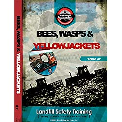 Bees, Wasps & Yellow Jackets