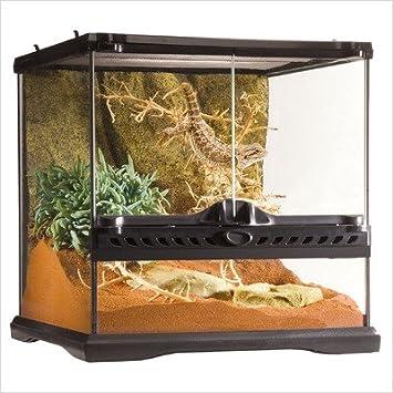 Exo Terra Nano Glass Terrarium Reptile Habitat - 8 x 8 x 8 Inches