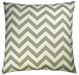 JinStyles Cotton Canvas Chevron Striped Accent Decorative Throw Pillow Cover (Grey & White, Square, 1 Cover for 18 x 18 Inserts)