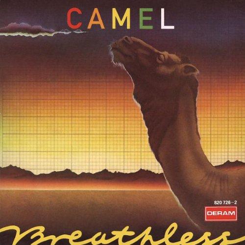prenom finissant en a prix des cigarettes camel