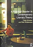 img - for A Practical Reader in Contemporary Literary Theory book / textbook / text book