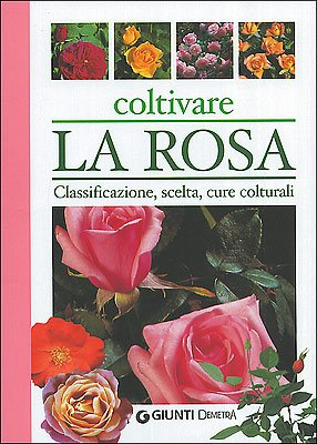 Coltivare la rosa (Pollice verde)