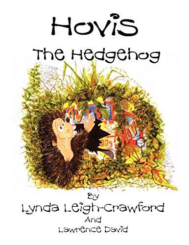 hovis-the-hedgehog-bonfire-night