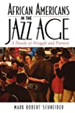 African Americans in the Jazz Age: A Decade of Struggle and Promise (The African American History Series)