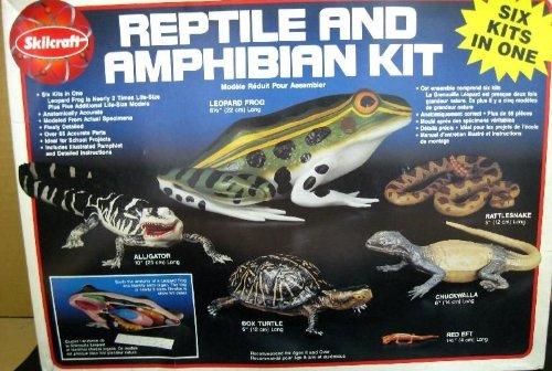 REPTILE & AMPHIBIAN KIT