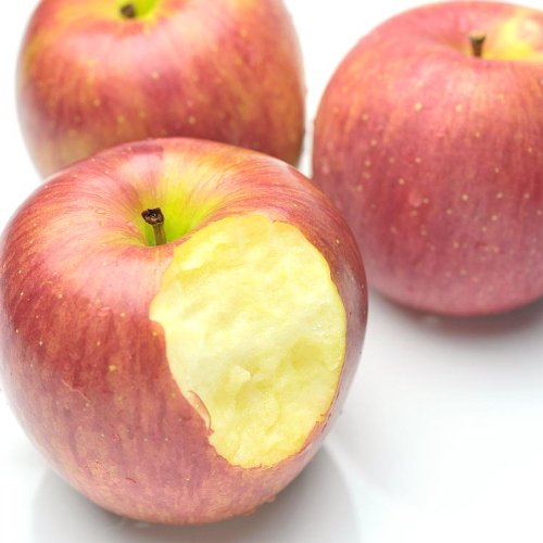 青森県産 りんご お徳用 りんご バラ詰め 大きさ無選別 10kg [訳あり] 旬の産地より