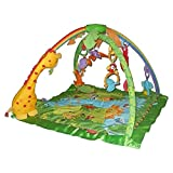 Fisher-Price Rainforest Melodies Gym