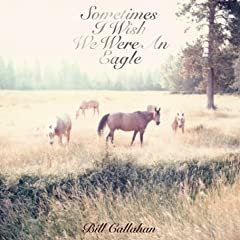 Sometimes I Wish We Were an Eagle - Bill Callahan
