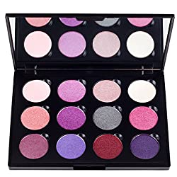 Coastal Scents Winterberry Palette 8.5-Ounce