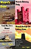 Camelot Wizards books 1 to 4 (English Edition)