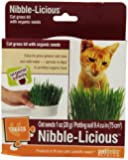 Petlinks Nibble-Licious Cat Grass Kit