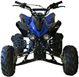 Alien V4 125cc Quad Bike (BRAND NEW) Automatic with Reverse Latest 2013 Model!