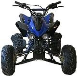 Alien V4 125cc Quad Bike BRAND NEW Automatic Picture