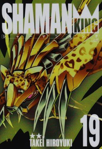 シャーマンキング  完全版 (19)