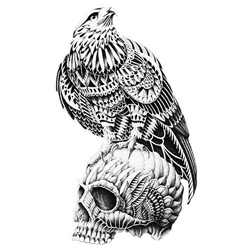 Red tailed hawk skull wall sticker decal goth bird artwork by bioworkz from mywonderfulwalls