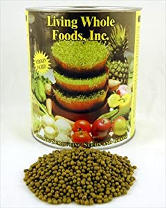 Mung Bean Sprouting Seed- Organic - 5 Lbs- Dried Mung Beans for Sprouts, Garden Planting, Chinese & Asian Cooking, Soup & More