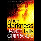 When Darkness Falls: Jack Swyteck, Book 6 | James Grippando