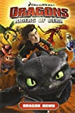 Dragons: Riders of Berk - Volume 1: Dragon Down (How to Train Your Dragon TV)