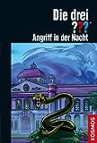 Die drei ??? Schattenwelt 2: Angriff in der Nacht (drei Fragezeichen)