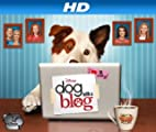 Dog With A Blog [HD]: Avery's First Crush [HD]
