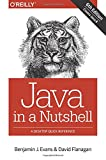 img - for Java in a Nutshell book / textbook / text book