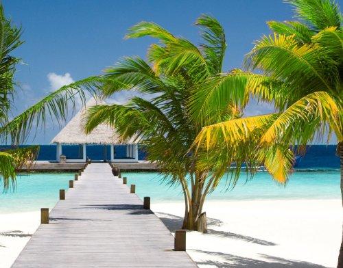 pin bild palmen insel strand paradies on pinterest. Black Bedroom Furniture Sets. Home Design Ideas