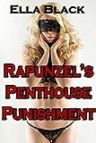 Rapunzel's Penthouse Punishment: An Erotic Fairy Tale