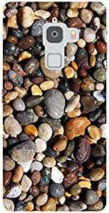 The Racoon Lean pebbles hard plastic printed back case / cover for Letv Le Max
