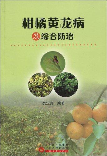 柑橘黄龙病及综合防治图片