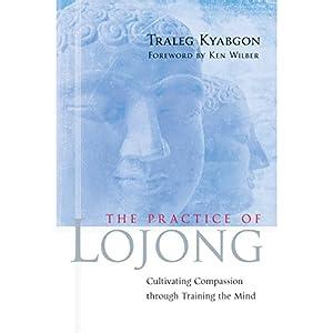 Practice of Lojong Hörbuch