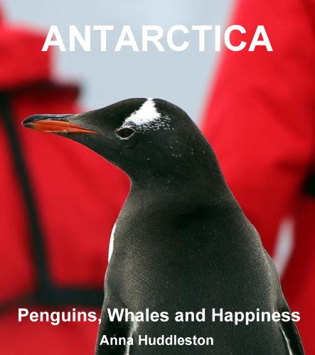 antarctica-penguins-whales-and-happiness