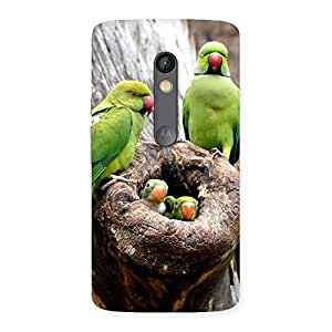 Cute Parrot House Multicolor Back Case Cover for Moto X Play