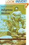Indigenous Mestizos: The Politics of...