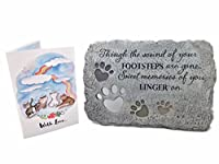 Pet Memorial Stones and Pet Loss Card with Rainbow Cat Theme Memorial Pet Gift Set